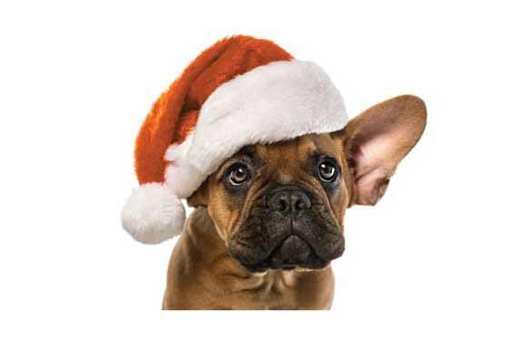 holiday deal Novation Settlement Solutions